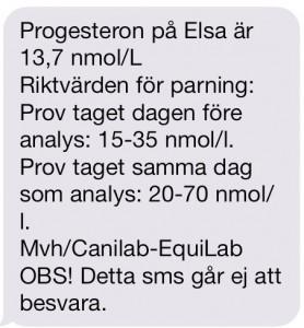 ELSA_VET_PROGGSVAR