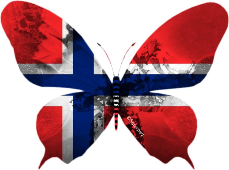 grattis på norska 17:e Maj | Kennel Cream of Pearls grattis på norska